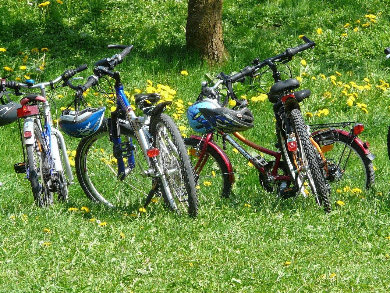 Line of kids mountain bikes in a meadow