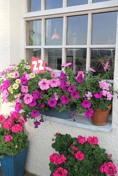 Cottage window surrounded by flower with the Garden Observation competition number, one of the annual Kirkby Community Centre Events